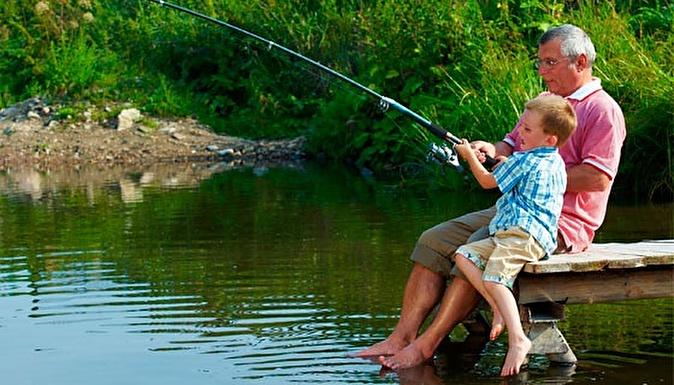 что может ловить рыбу в пруду
