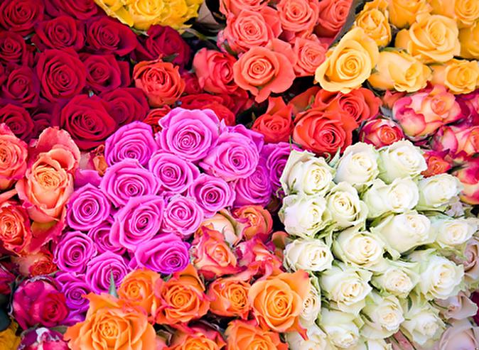 Цветы на м