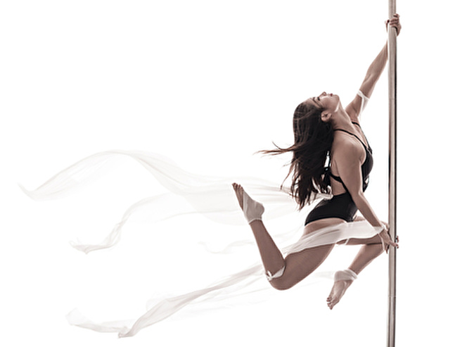 an analysis of exotic dancer profile
