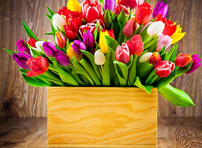 Ко дню всех влюбленных неповторимые букеты из тюльпанов и букеты из роз в крафт плайм-пакетах от известного цветочного интернет-